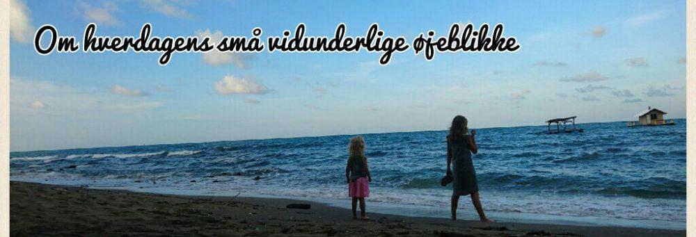 bangkorsgaard.dk